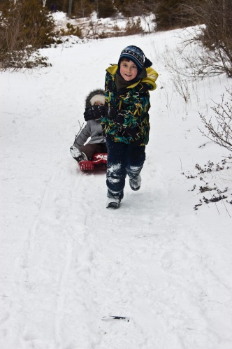 pulling sled