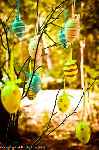 easter eggs on a branch