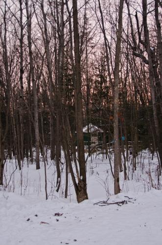 yurt in killarney in the winter