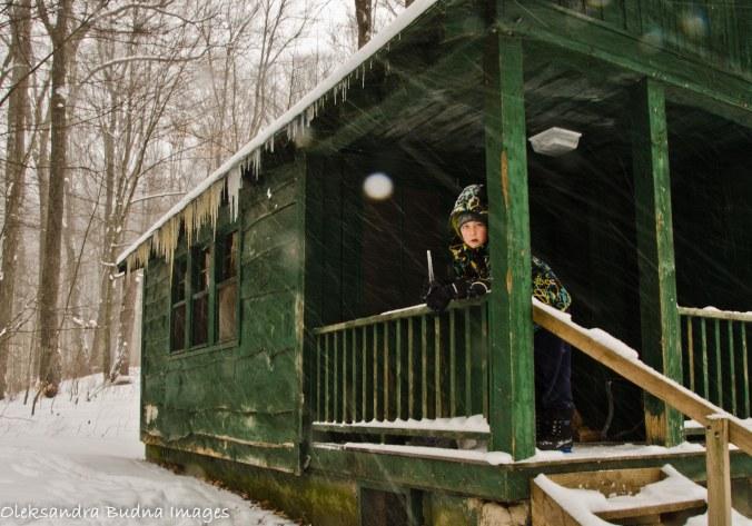 Cabin in Allegany State park in the winter