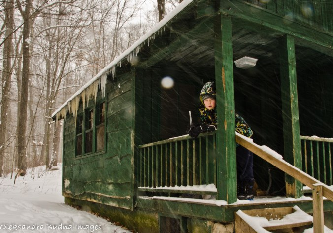 Cabin in Allegany State park in the winter
