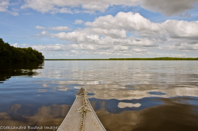 canoeing in Everglades
