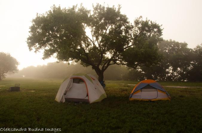 campsite at Flamingo campground at Everglades