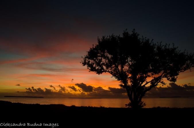 sunrise at Flamingo campground everglades