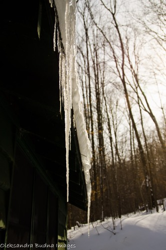 icicles on a cabin at Allegany state park