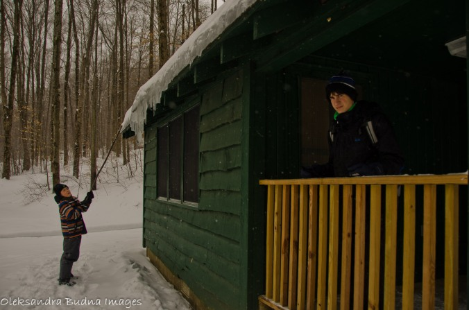 Cabin at Allegany state park, Congdon trail in the winter