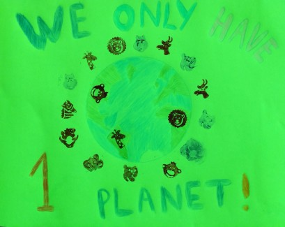 we only have 1 planet