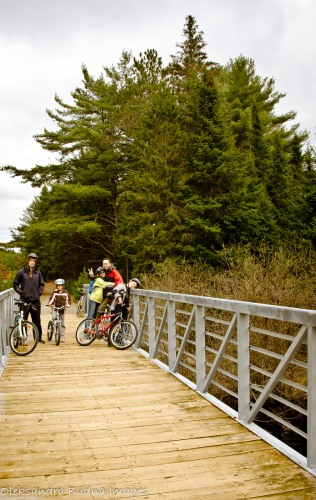 biking in algonquin