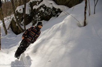 jumping into a snow bank