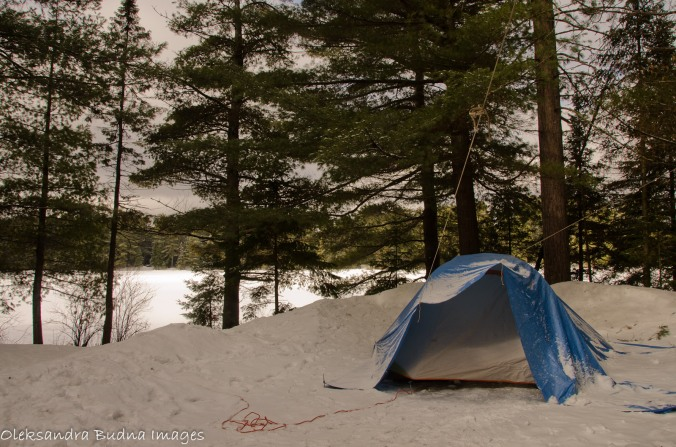 tent in the winter, Mew Lake Campground, Algonquin