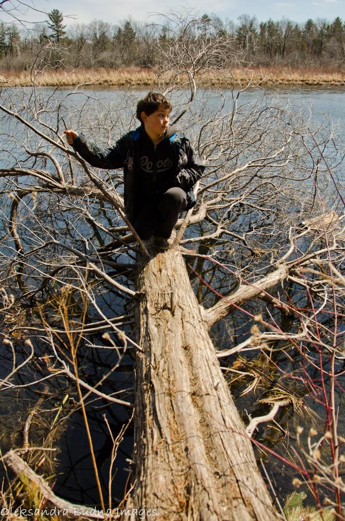 kid on a log