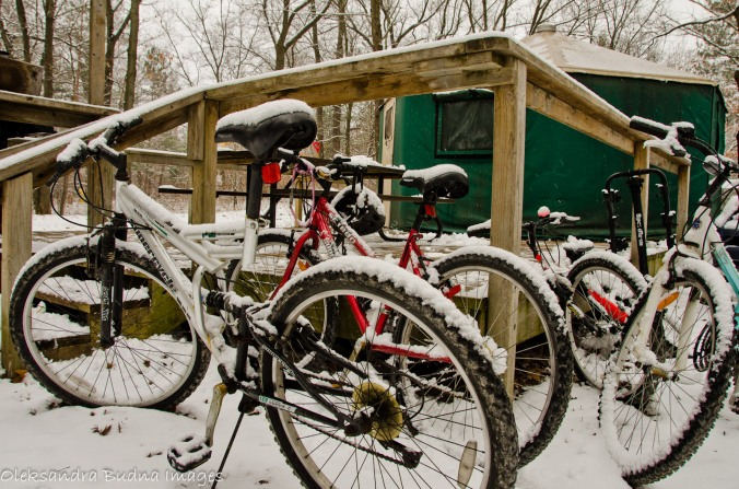 bikes covered in snow