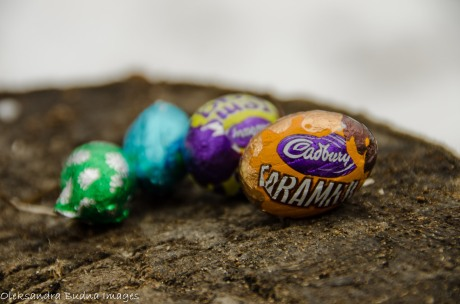chocolate eggs on  a stump