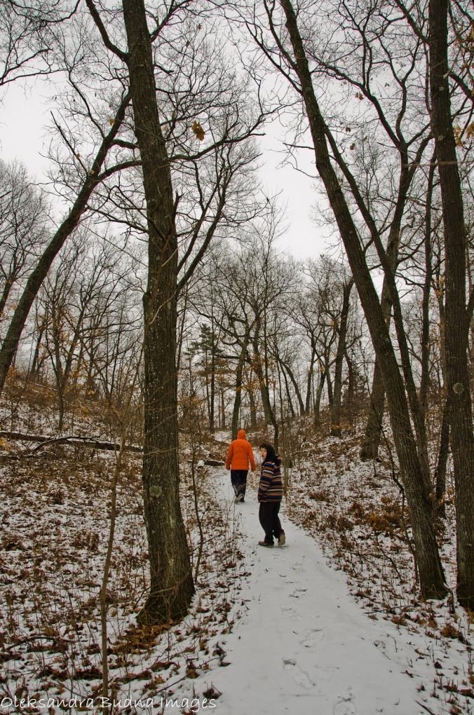 Nipissing trail at Pinery