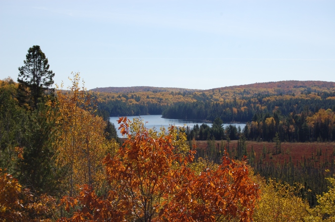 view of algonquin in the fall neat the Viitor Centre