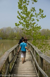 foot bridge at Wheatley Provincial park
