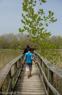 foot bridge at Wheatley Provincial park