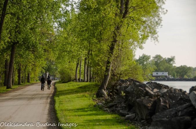 biking on Pelee Island