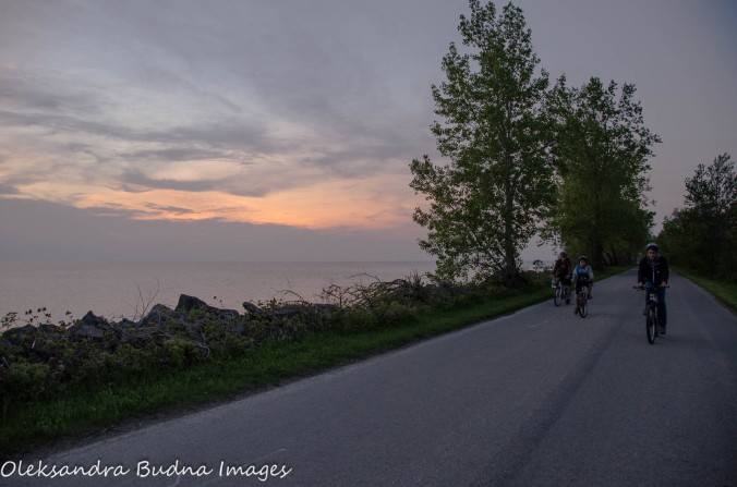 biking on Pelee Island