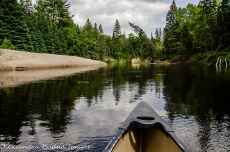 caneoing on Big East River at Arrowhead Provincial Park