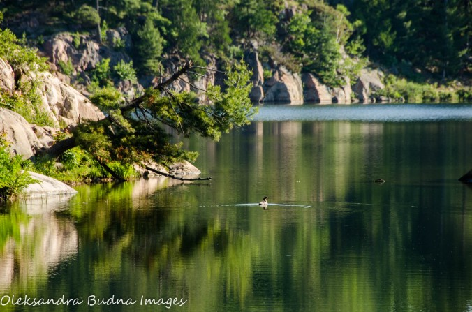 Morning on George Lake at Killarney Provincial Park