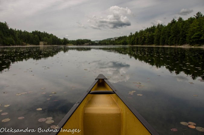 canoeing on Freeland Lake at Killarney
