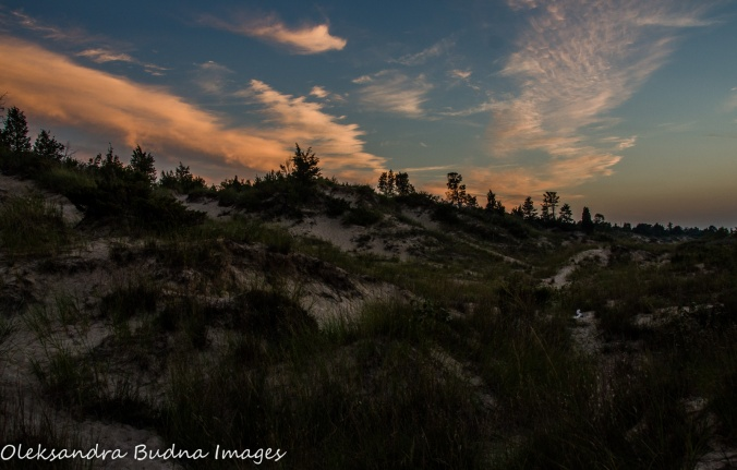 sand dunes at Pinery Provincial Park
