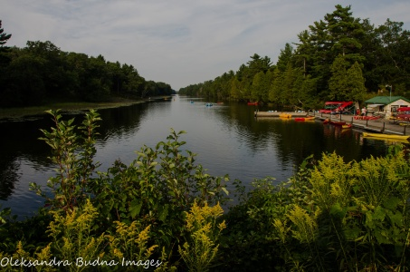 Old Ausable Channel at Pinery Provincial Park