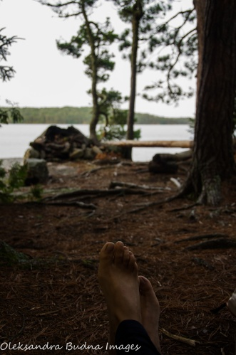 view from the tent - backcountry campsite in Quetico
