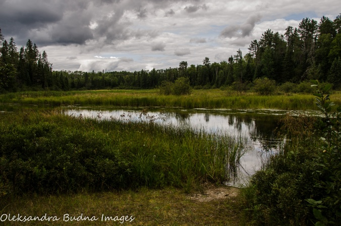 view from the Boardwalk at Quetico Provincial Park