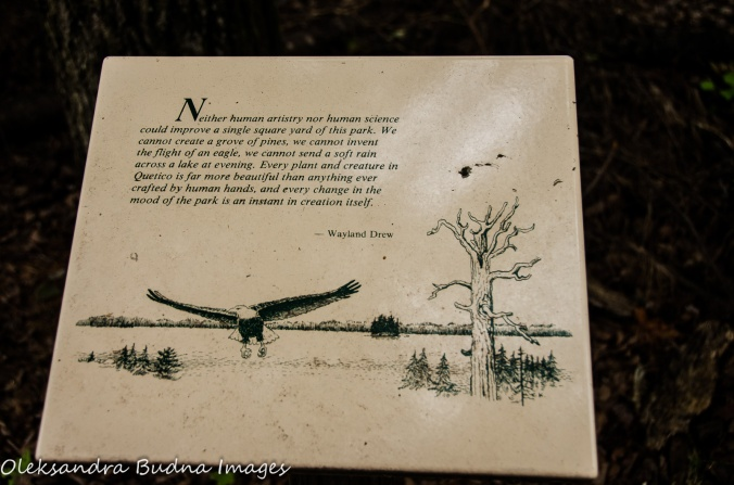 quote along the Boardwalk at Quetico Provincial Park