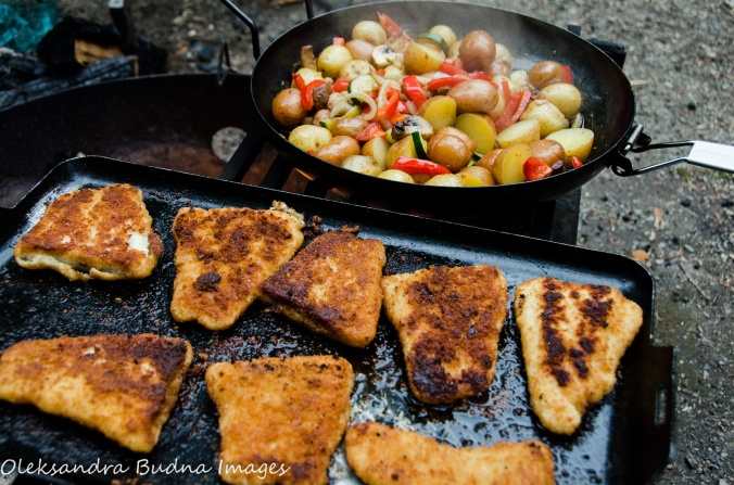 fish and veggie over the campfire