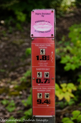 trail marker at Sleeping Giant