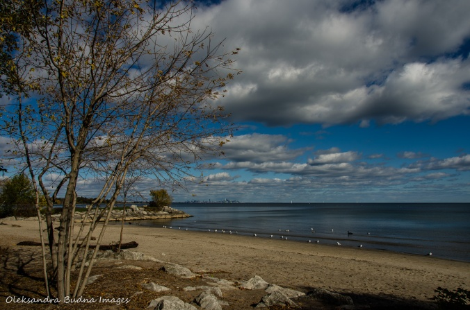 View of Lake Ontario at Jack Darling Park in Mississauga