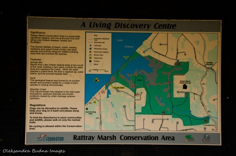 map of Rattray March conservation area in Mississauga