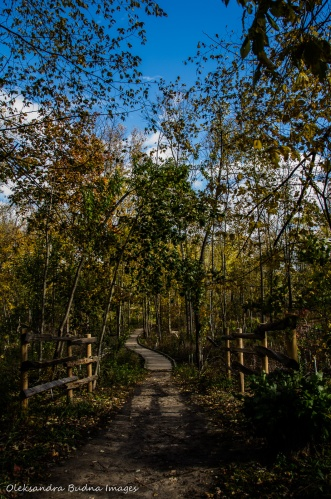 walking trail at Rattray Marsh in Mississauga