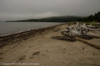 foggy morning o the beach in Neys Provincial Park