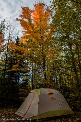 campsite in Restoule Provincial Park