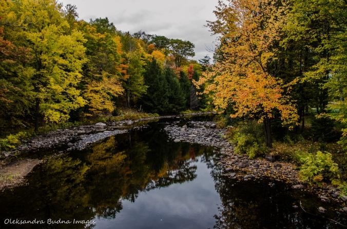 creek in Restoule Provincial Park