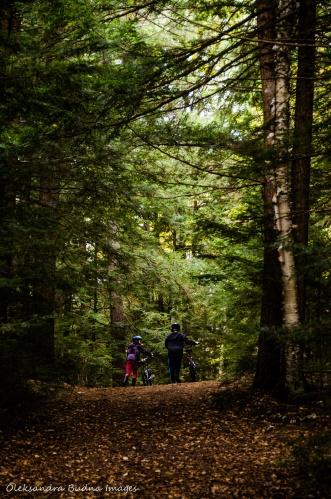 Rangers Point Trail in Restoule Provincial Park