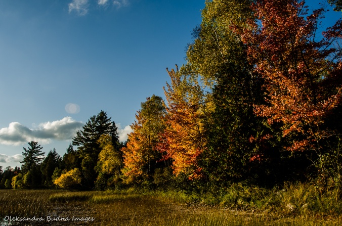 fall in Restoule Provincial Park