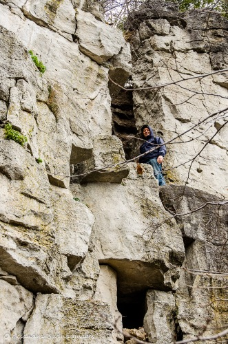limestone cliffs at Rattlesnake Point