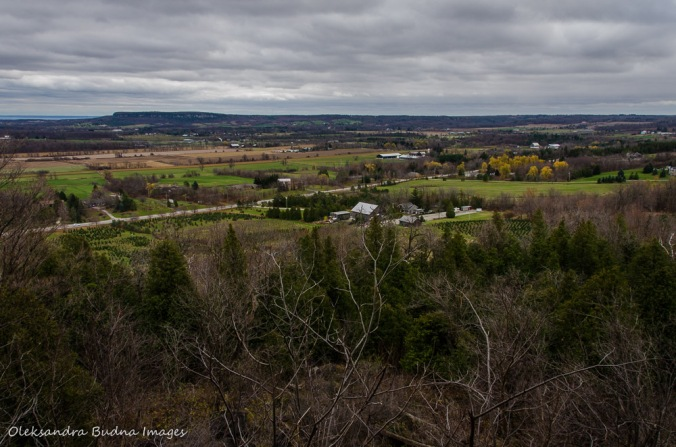 view of Lowville Valley from Pinnacle Lookout at Rattlesnake Point