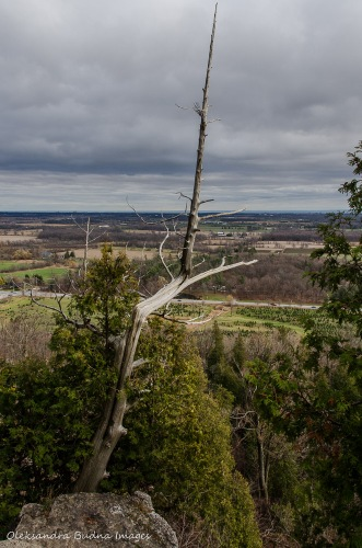 View from Nelson Lookout at Rattlesnake Point