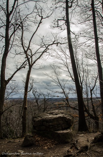 view at Rattlesnake Point