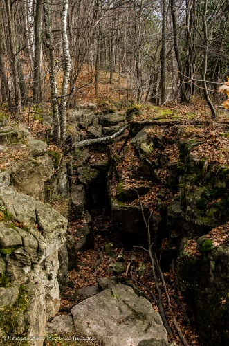 crevices at Rattlesnake Point