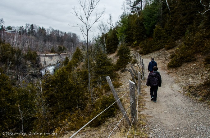 hiking near Credit River at Forks of the Credit Provincial Park