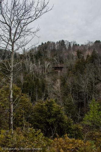 Credit River gorge at Forks of the Credit Provincial Park