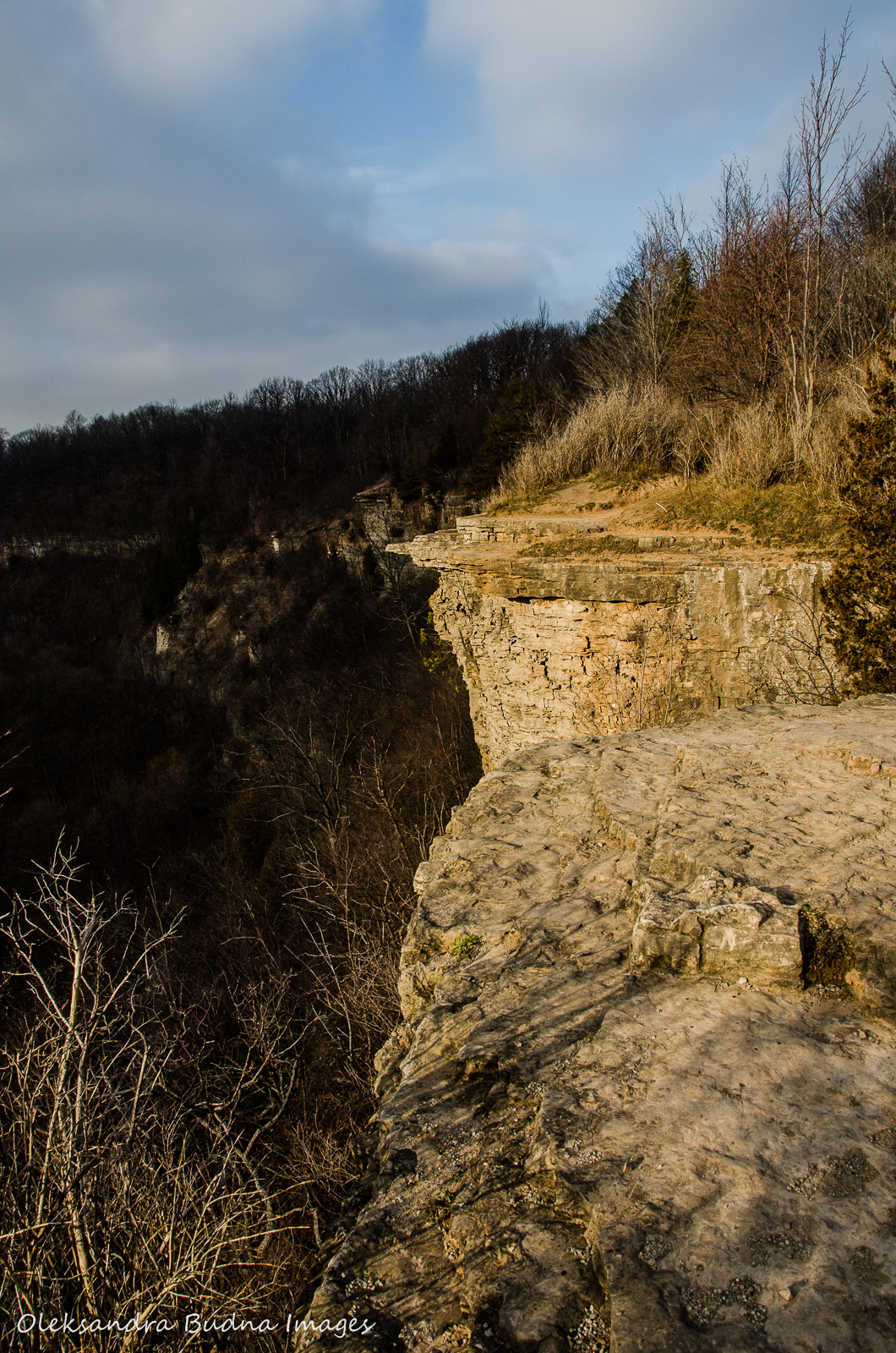 Exploring Hamilton Waterfalls Webster S Falls Tew S