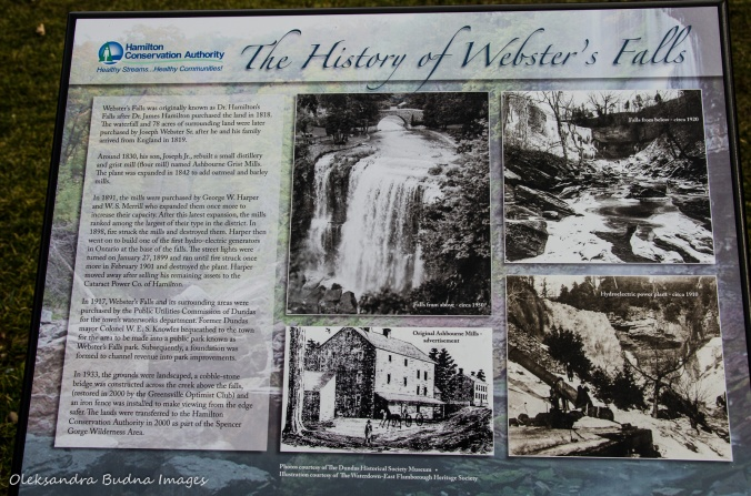 History of Webster's Falls